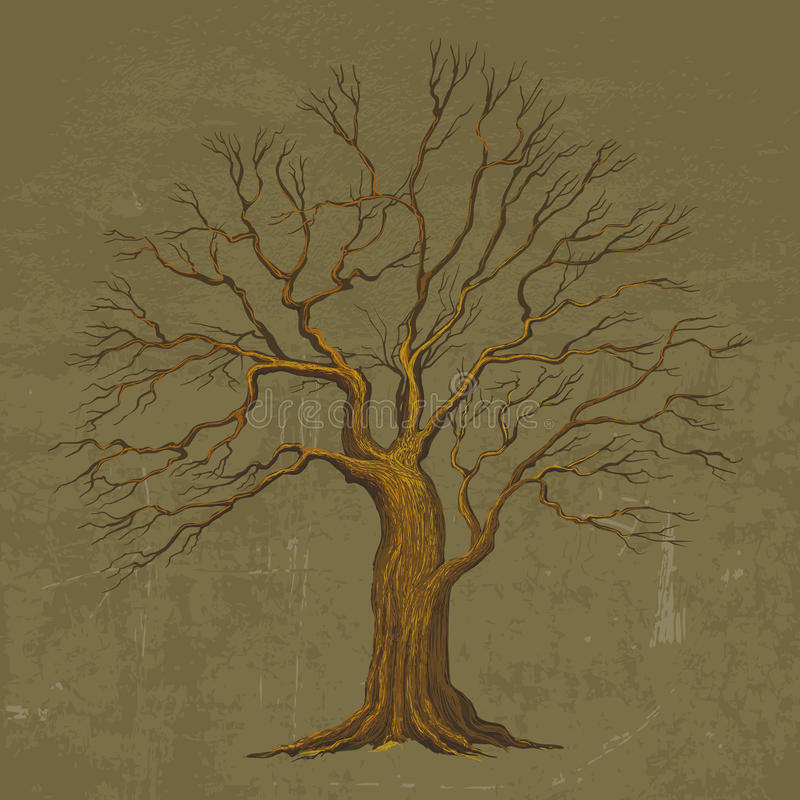 Grande illustration de vecteur d'arbre illustration stock