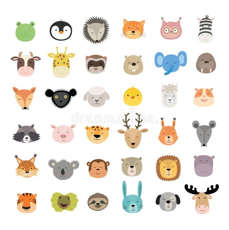 Grande insieme dei fronti animali svegli Caratteri disegnati a mano Illustrazione di vettore illustrazione vettoriale