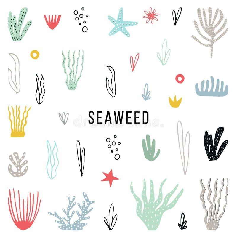Grande insieme dell'alga del colorfull disegnato a mano e tagliato di carta Illustrazione di vettore royalty illustrazione gratis