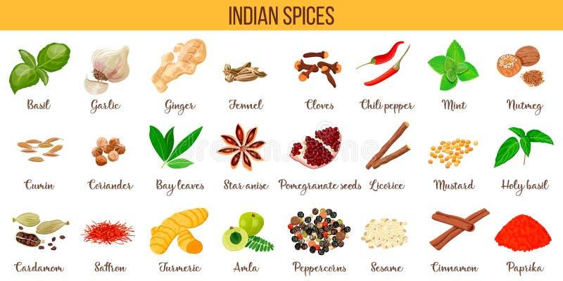 Grande insieme delle siluette culinarie popolari delle spezie Zenzero, peperoncino, aglio, noce moscata, anice ecc illustrazione vettoriale