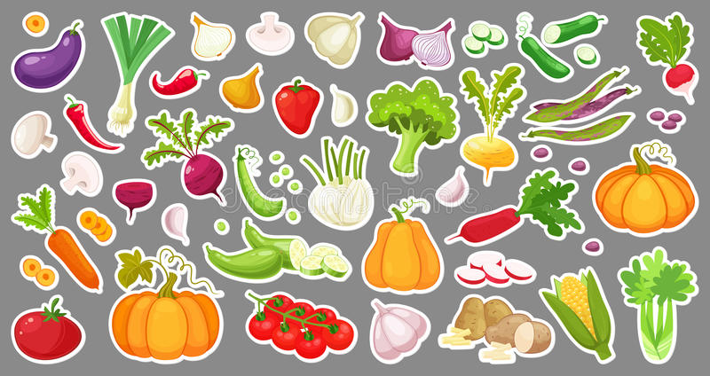 Grande insieme delle verdure variopinte Autoadesivi isolati delle verdure Verdure organiche fresche naturali Vettore di stile del royalty illustrazione gratis