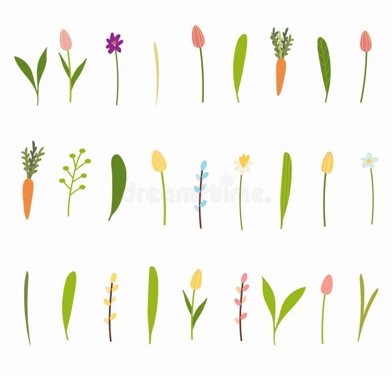 Grande insieme di vettore dei fiori del giardino della molla illustrazione vettoriale