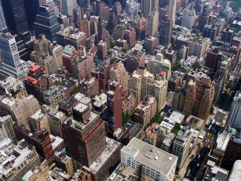 Grande jungle de ville photos libres de droits