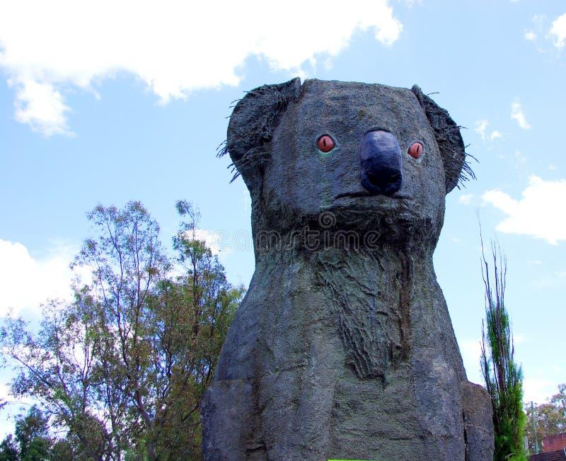 Grande Koala immagini stock libere da diritti
