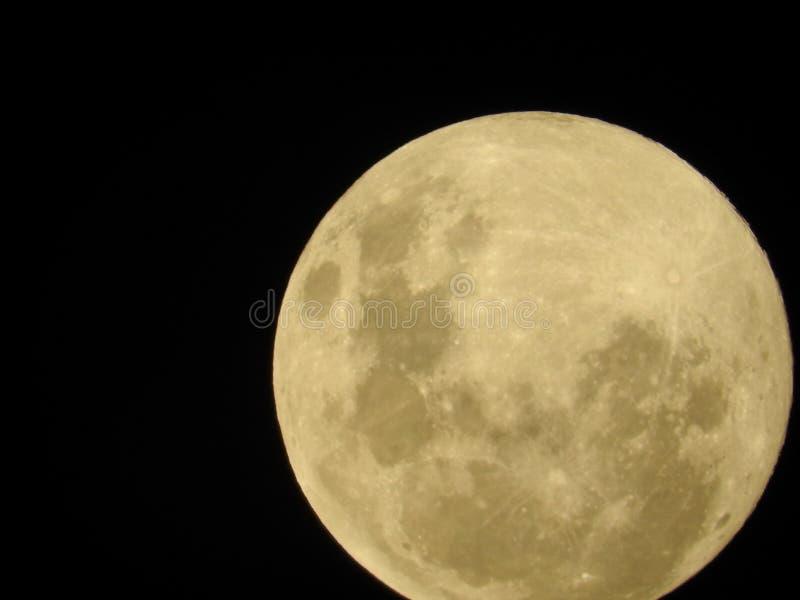 Grande lua brilhante da neve no céu escuro fotos de stock