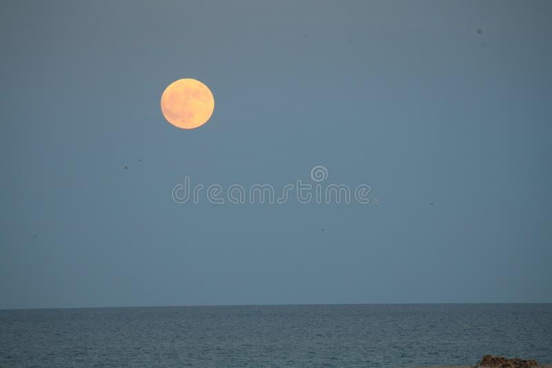 Grande luna in uno skyover blu il mare nel parco naturale nel Las Palmas Spagna di Corralejo Fuerteventura immagine stock libera da diritti