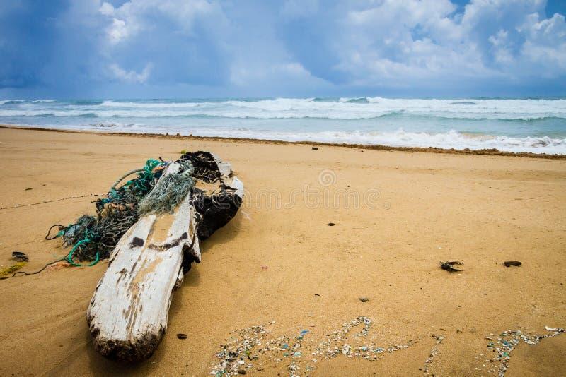Grande madeira lançada à costa complicada com cordas na praia de Kuaui com céus nebulosos e no oceano roiling no fundo fotos de stock