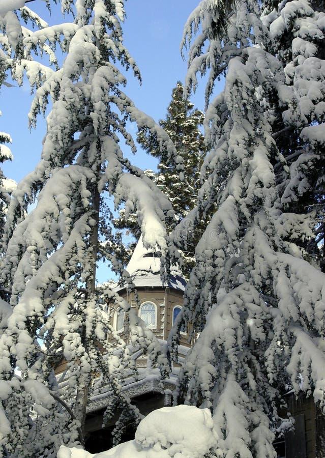 Grande maison dans les bois de neige photographie stock