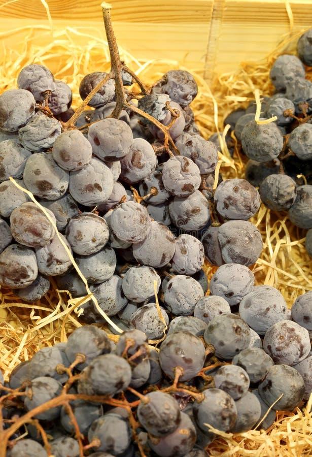 Grande mazzo di uva nera che si trova sulla paglia immagine stock