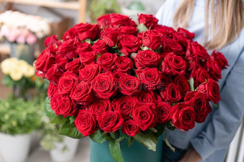 Grande mazzo luminoso di lusso nelle mani di una ragazza sveglia Cento delle rose rosse del giardino Colori appassionato il color fotografia stock libera da diritti