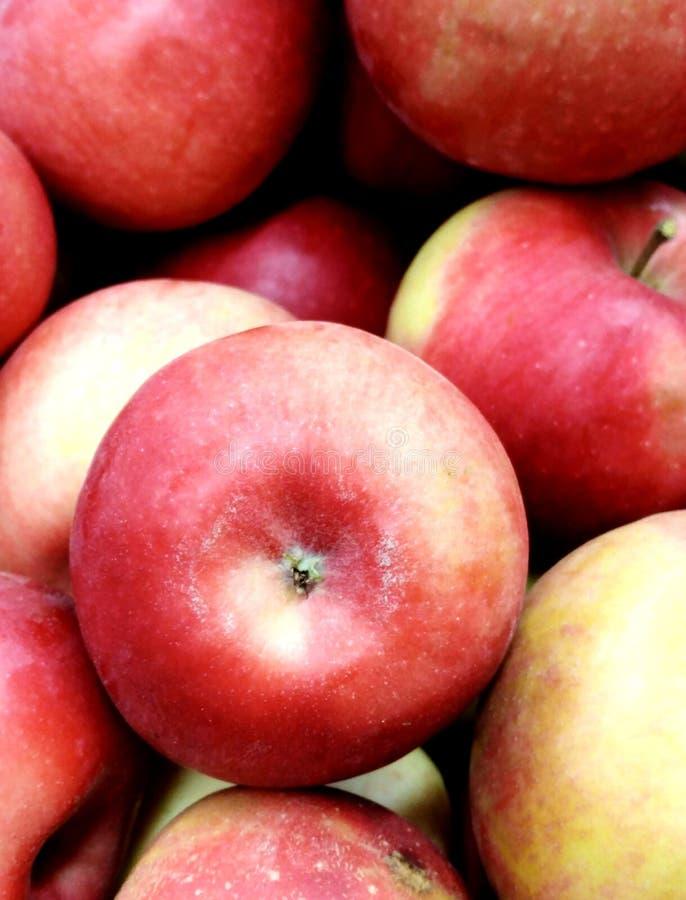 Grande mela rossa nel centro immagine stock