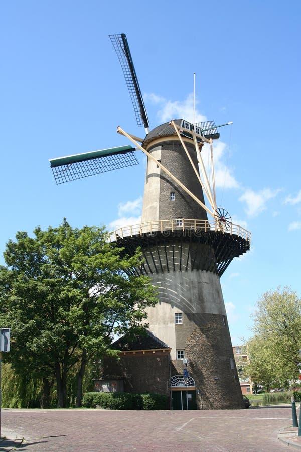 Grande moinho de vento holandês imagens de stock royalty free