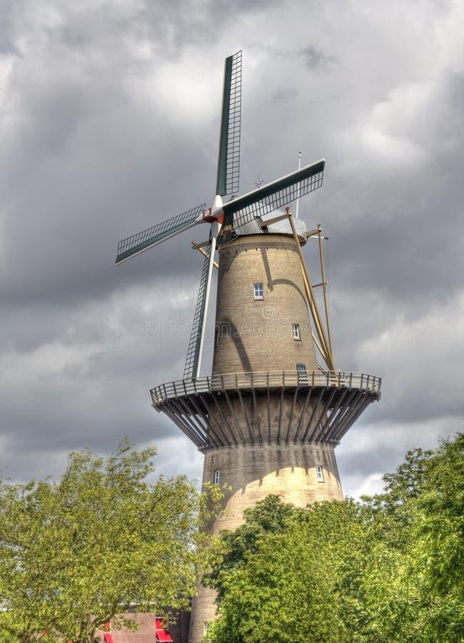 Grande moinho de vento holandês fotos de stock