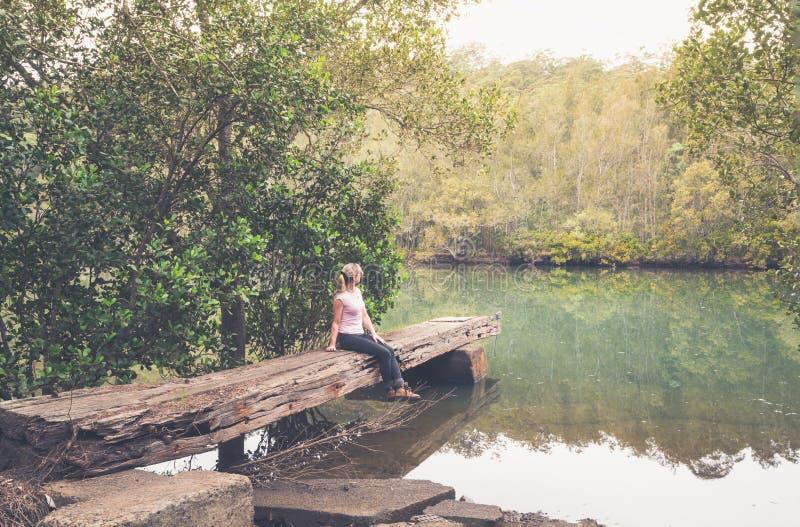 Grande molhe desbastado rústico da madeira no bushland australiano imagem de stock royalty free