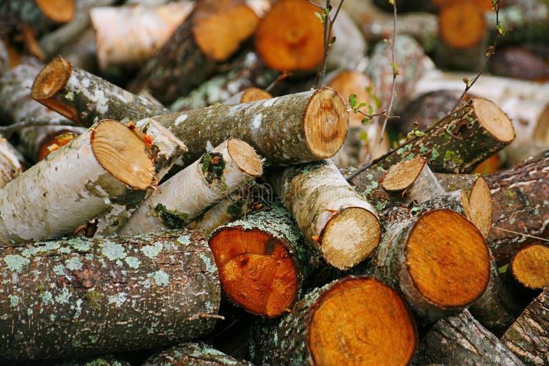 Grande mucchio di legna da ardere Grande mucchio di legna da ardere per il camino tremula rossa segata dei tronchi di albero, acc fotografie stock libere da diritti