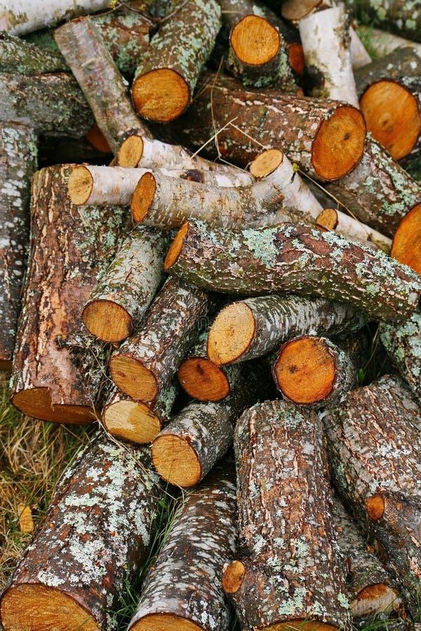 Grande mucchio di legna da ardere Grande mucchio di legna da ardere per il camino tremula rossa segata dei tronchi di albero acca fotografia stock