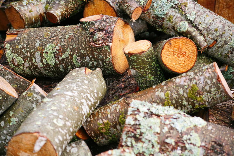 Grande mucchio di legna da ardere Grande mucchio di legna da ardere per il camino tronchi di albero segati tremula rossa e betull immagine stock libera da diritti