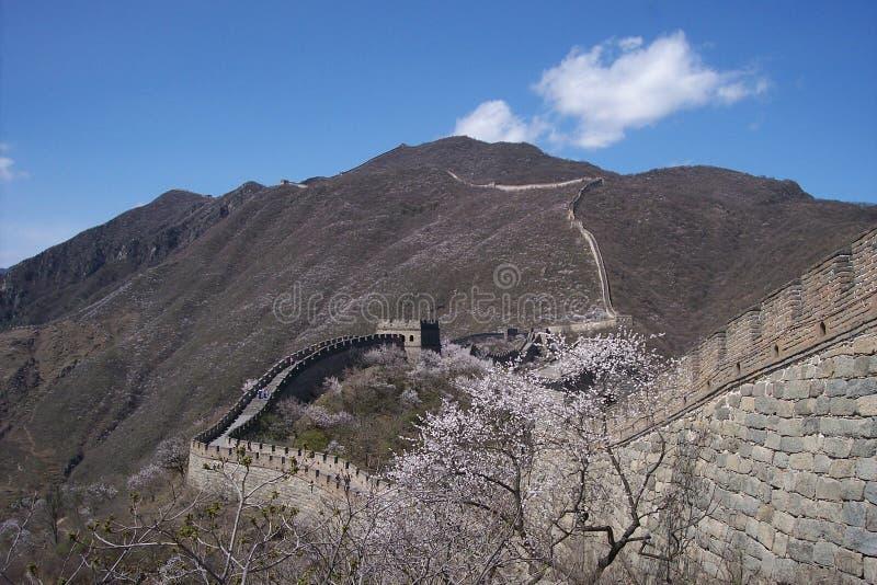 Grande Muraglia della porcellana immagini stock