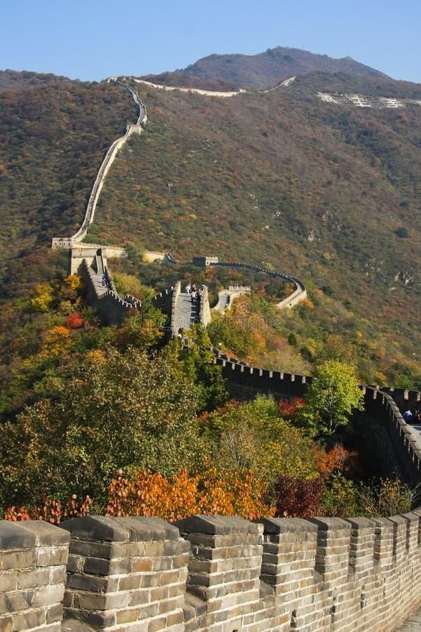 Grande Muraille en automne Le mur traverse les dessus des collines couvertes de forêt photo libre de droits