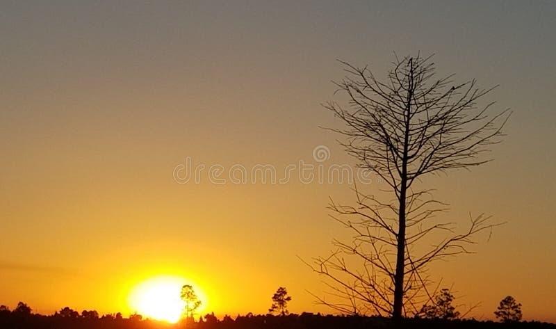 Grande nascer do sol imagens de stock royalty free