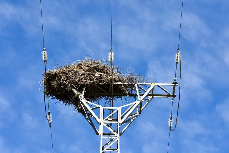 grande nido fatto con i rami degli alberi alla cima di una torre elettrica di alta tensione che conduce l'elettricità alle case i fotografia stock libera da diritti