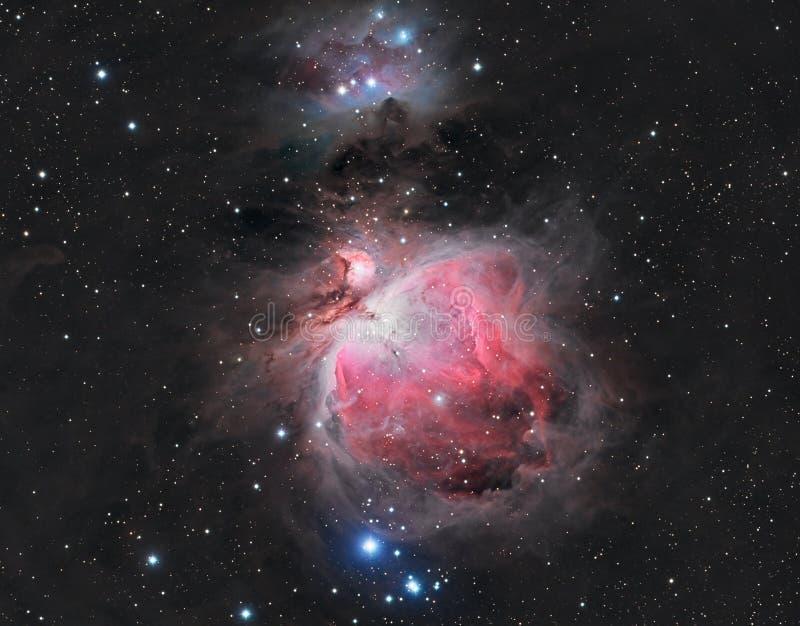 Grande Orion Nebula fotografia stock libera da diritti