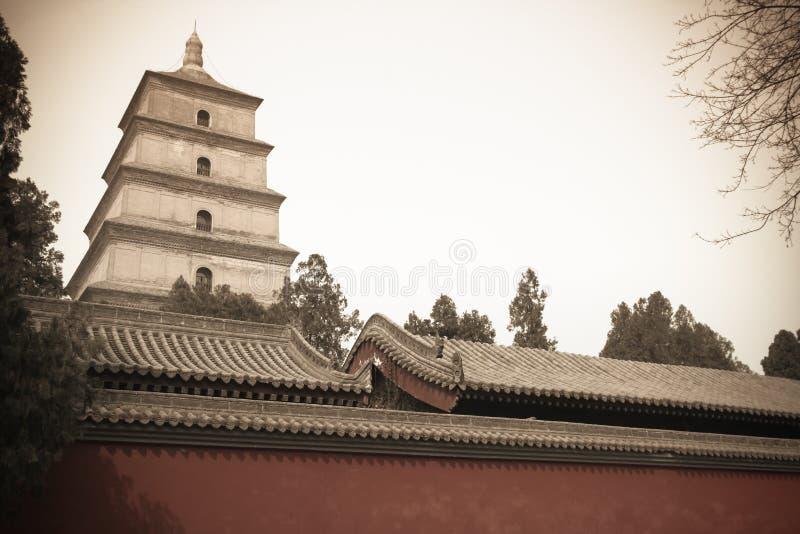 Grande pagoda sauvage chinoise d'oie image libre de droits