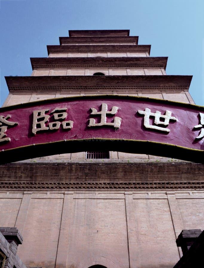 Grande pagoda sauvage d'oie photographie stock libre de droits