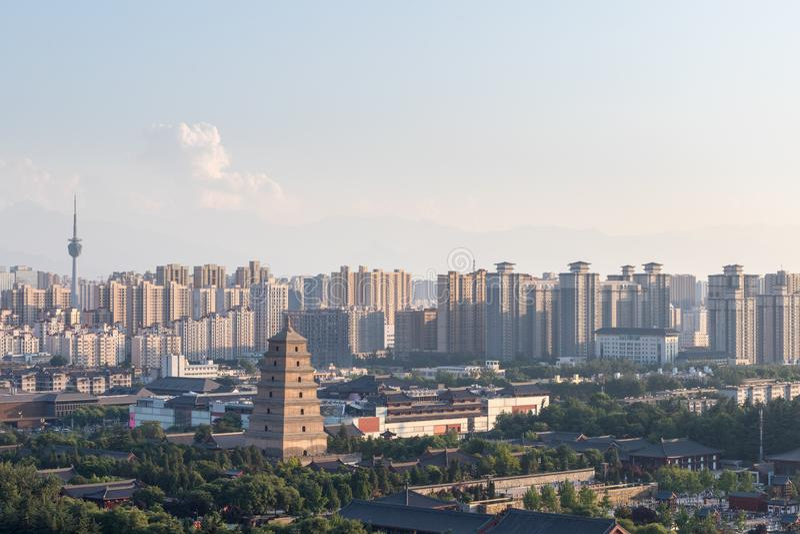Grande pagoda sauvage d'oie au crépuscule image libre de droits