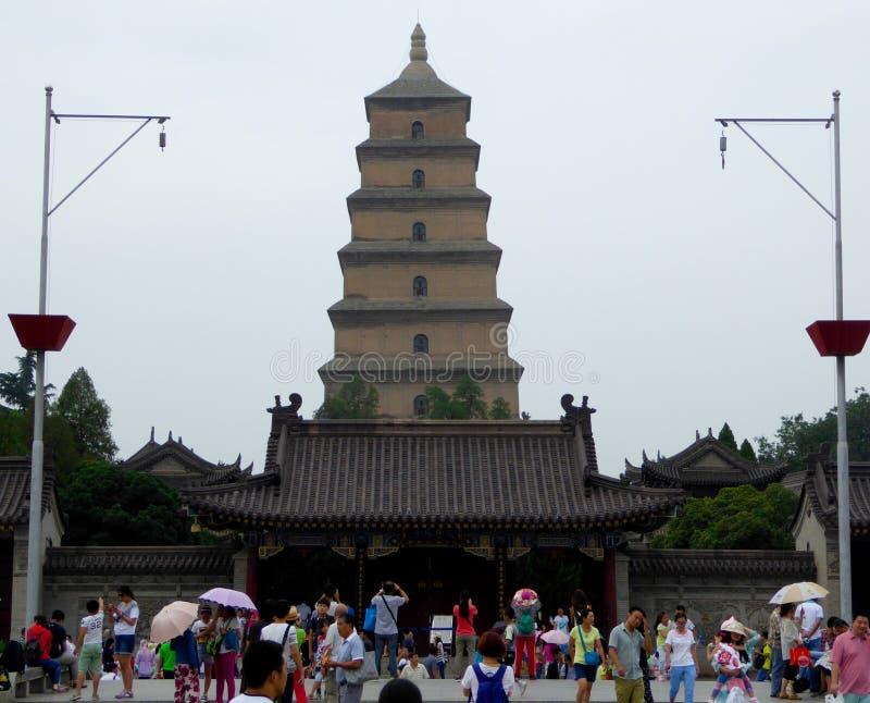 Grande pagode selvagem do ganso fotografia de stock