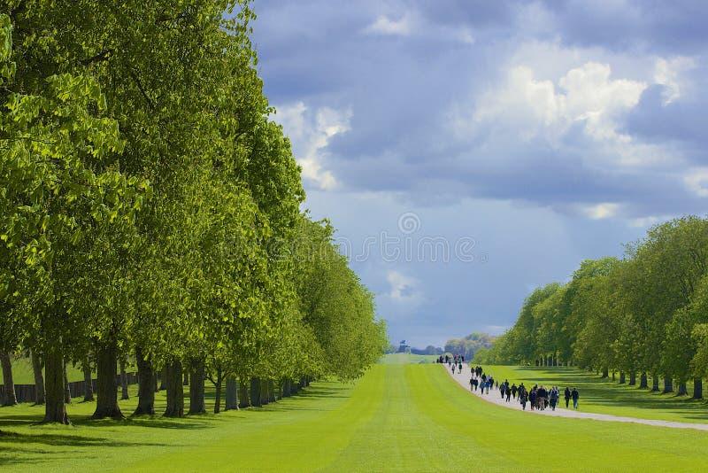 Grande parco in Windsor, Inghilterra fotografia stock