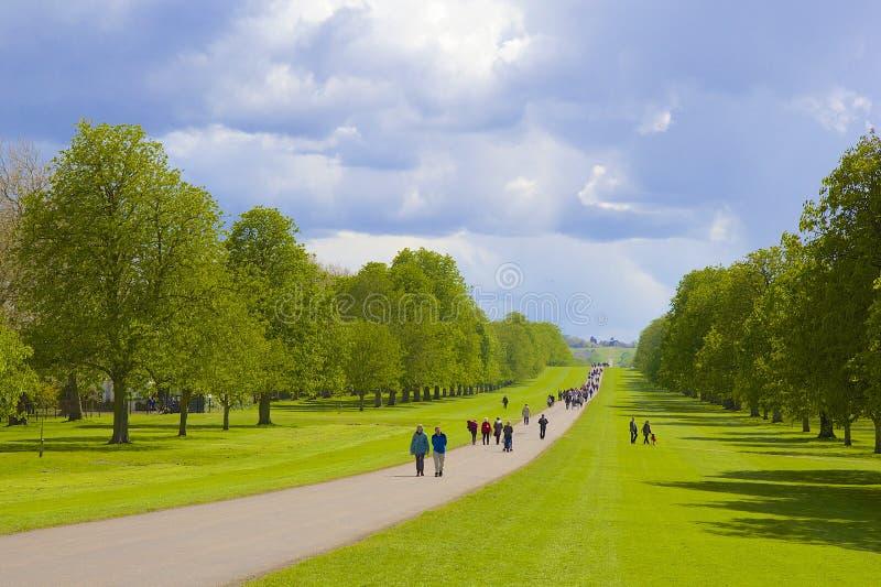 Grande parco in Windsor, Inghilterra immagine stock libera da diritti