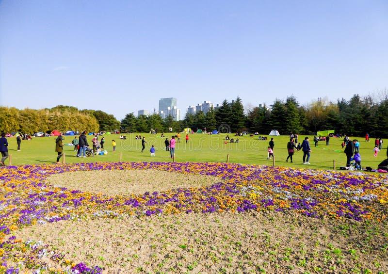 Grande pelouse à l'intérieur de parc de siècle photos libres de droits