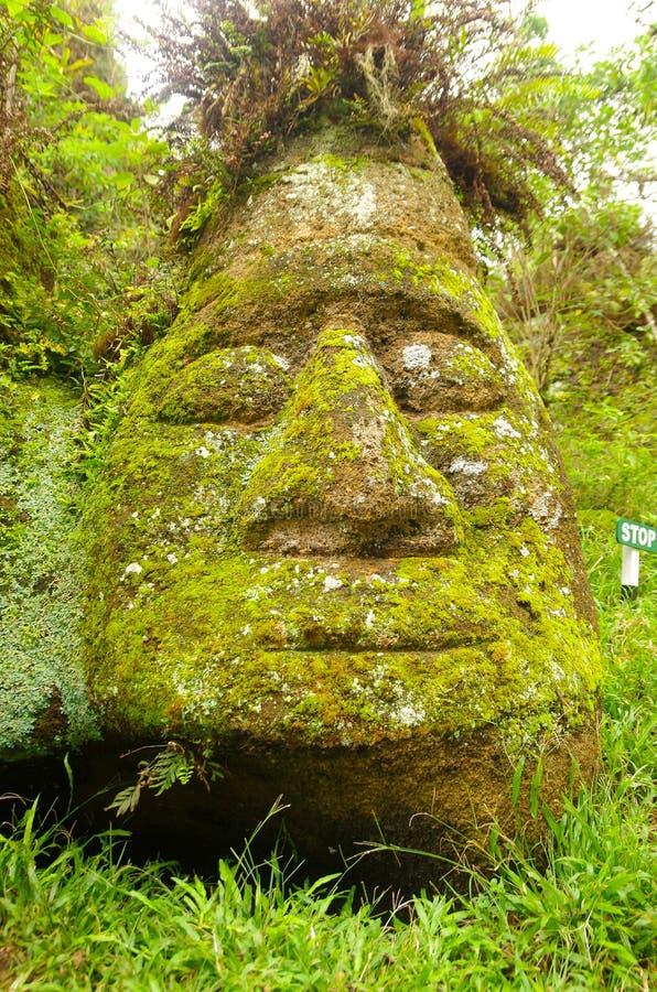 Grande pierre avec des configurations et le vert de visage humain photo libre de droits