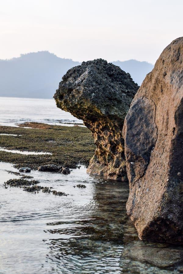 Grande pierre dans la pierre de trbig en eau de mer de Tansparent avec l'usine et le sable, Asie Indonésie image stock