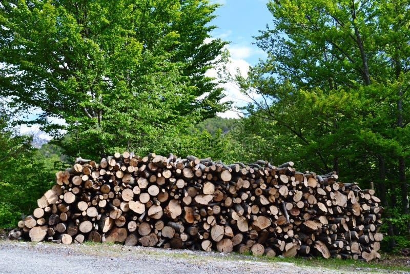 Grande pile des rondins en bois posés le long de la route dans une campagne dans un jour d'été ensoleillé images stock