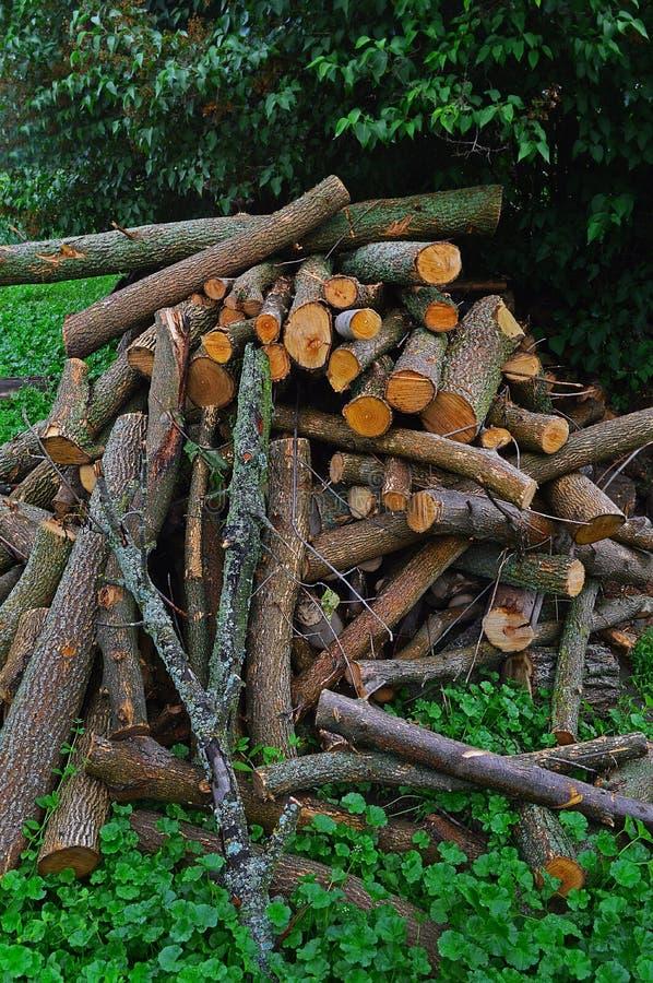 grande pilha de logs frescos da madeira do fogo fotografia de stock