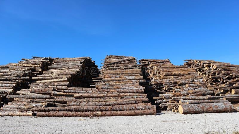 Grande pilha de troncos de árvore desbastados sob o sol, entre uma estrada secundária e o céu azul fotografia de stock royalty free