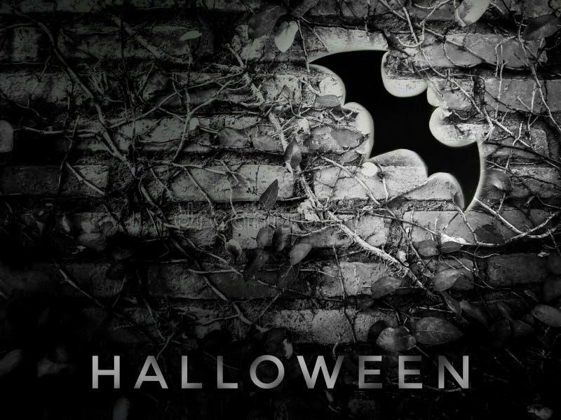 Grande pipistrello nero sulla parete scura di clamber fotografia stock libera da diritti