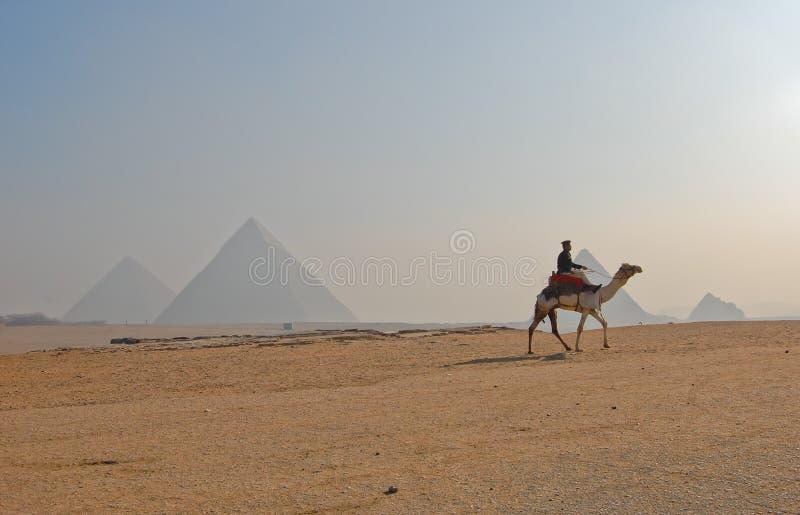 Grande piramide di Giza, Egitto fotografie stock
