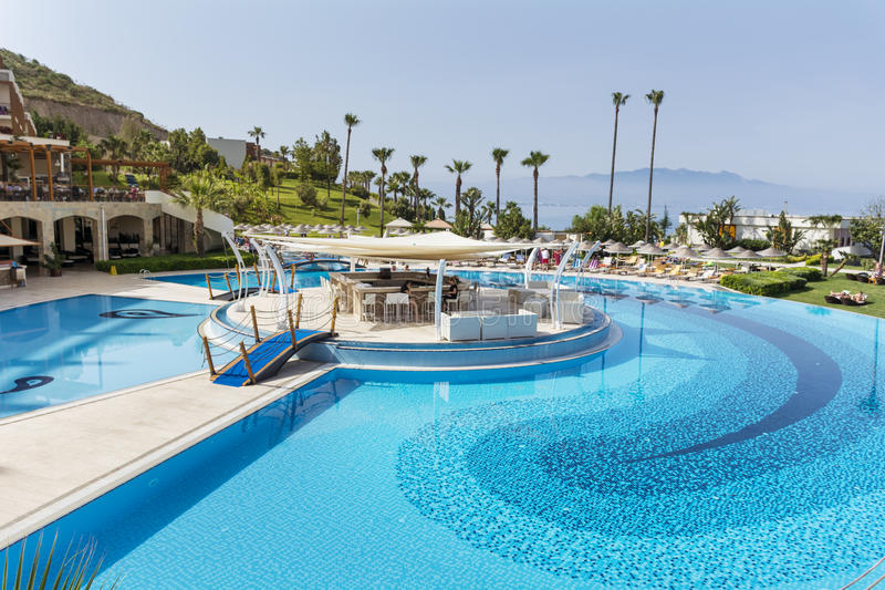Grande piscine ext rieure avec des paumes et mer l for Piscine du soleil nice