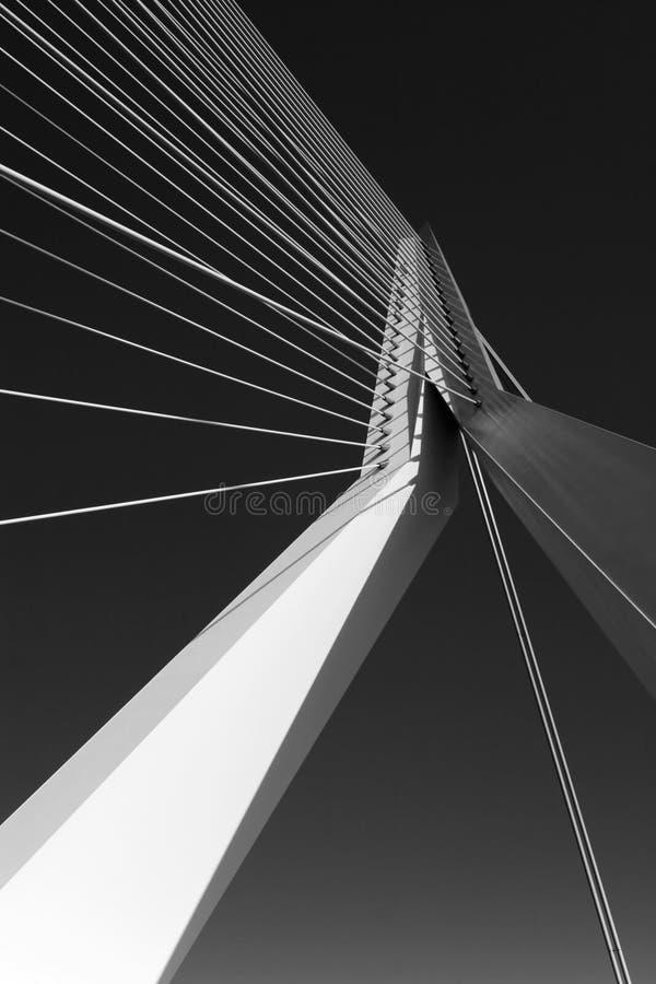 Grande ponte sospeso immagine stock