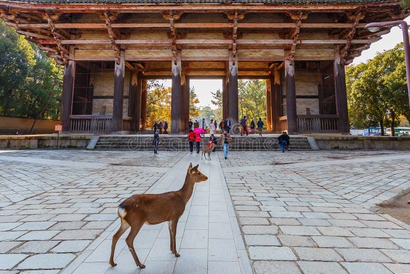 Grande portone del sud (Nandaimon) al tempio di Todaiji a Nara fotografie stock libere da diritti