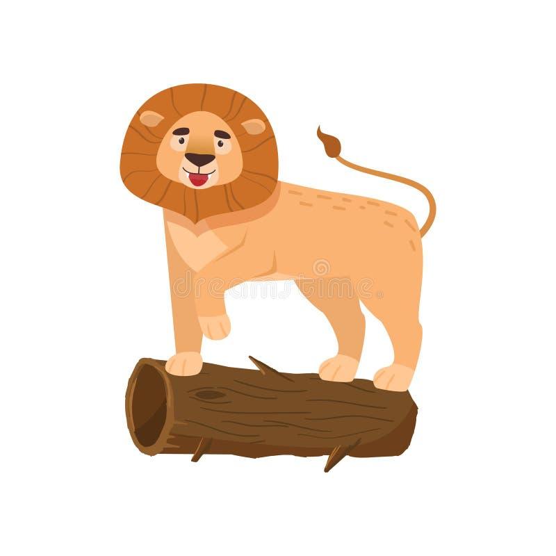 Grande position de lion sur le rondin d'isolement sur le fond blanc illustration libre de droits