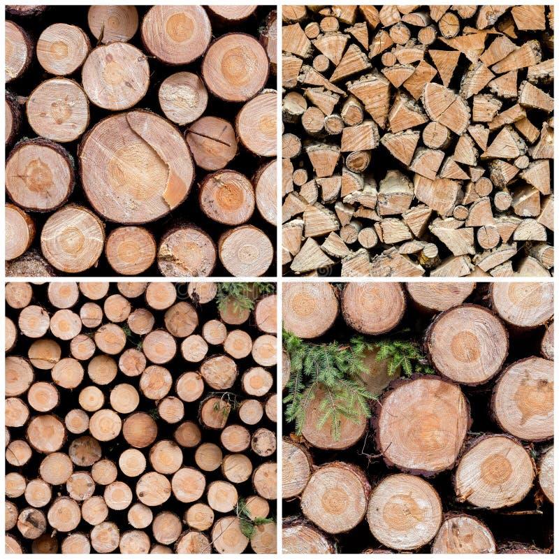 Grande raccolta degli ambiti di provenienza di legno di struttura fotografia stock