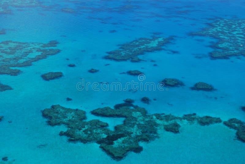 Grande recife de barreira - Austrália imagem de stock