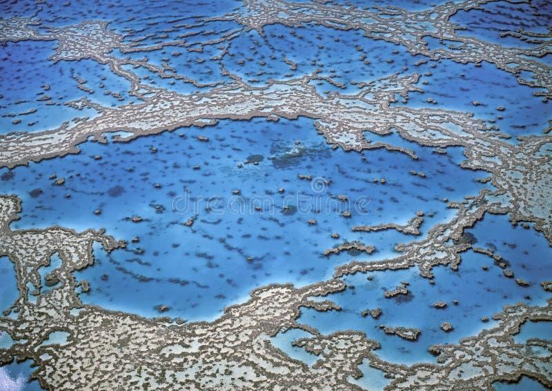 Grande recife de coral, Austrália imagem de stock royalty free