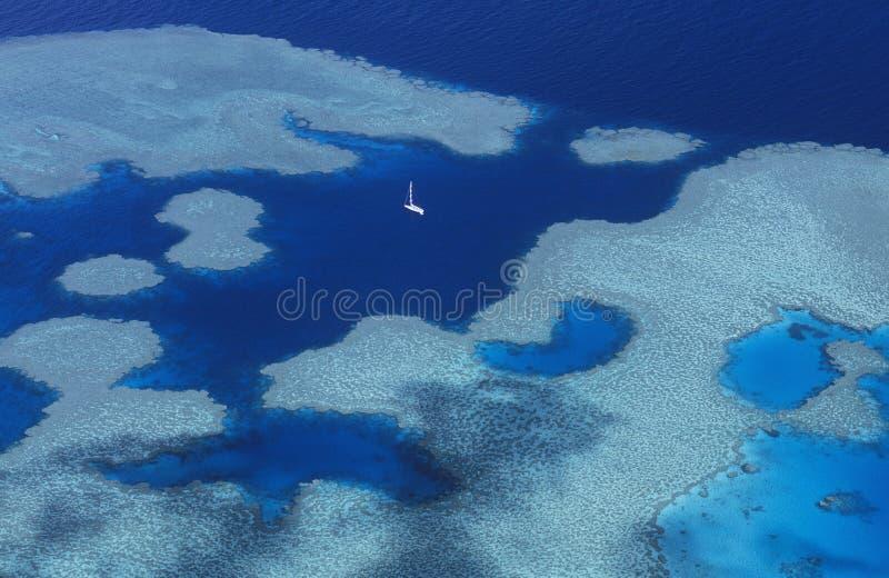 Grande recife de coral de Austrália Queensland imagem de stock royalty free