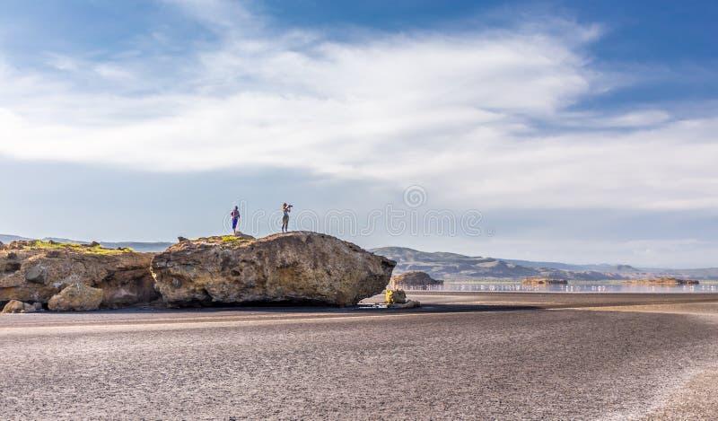 Grande roccia vicino alla spiaggia fotografia stock