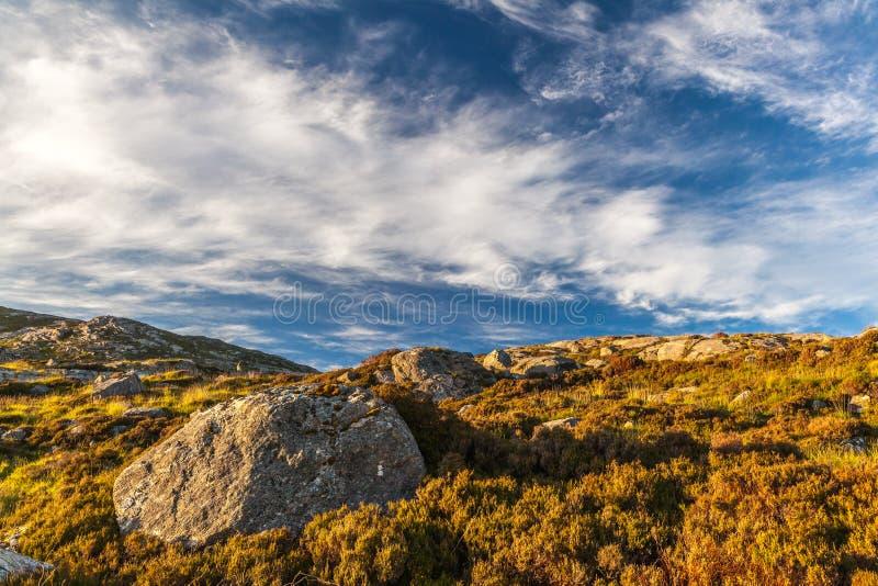 Grande rocha na urze Ilhas ocidentais, Escócia imagem de stock